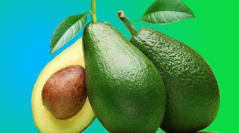 ما هي فوائد الأفوكادو (فاكهة لافوكا)