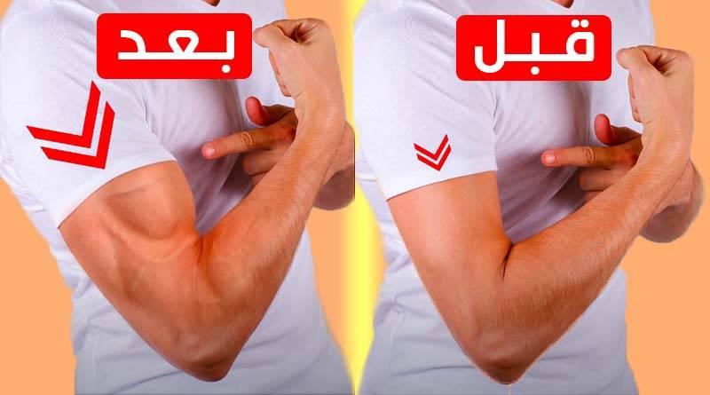 تمارين لزيادة حجم ذراعيك بدون أي معدات